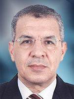 Mohsen Elmekresh