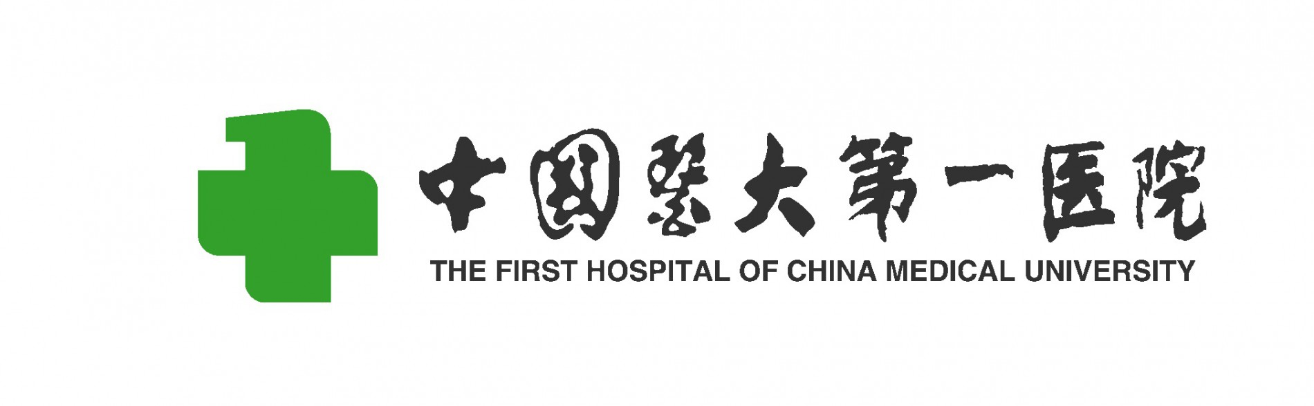 The First Hospital of China Medical University